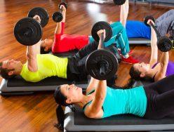 The Language of Strength Training Program Design