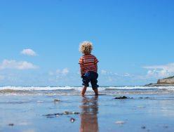 Behavior Regulation Tools for Autistic Clients