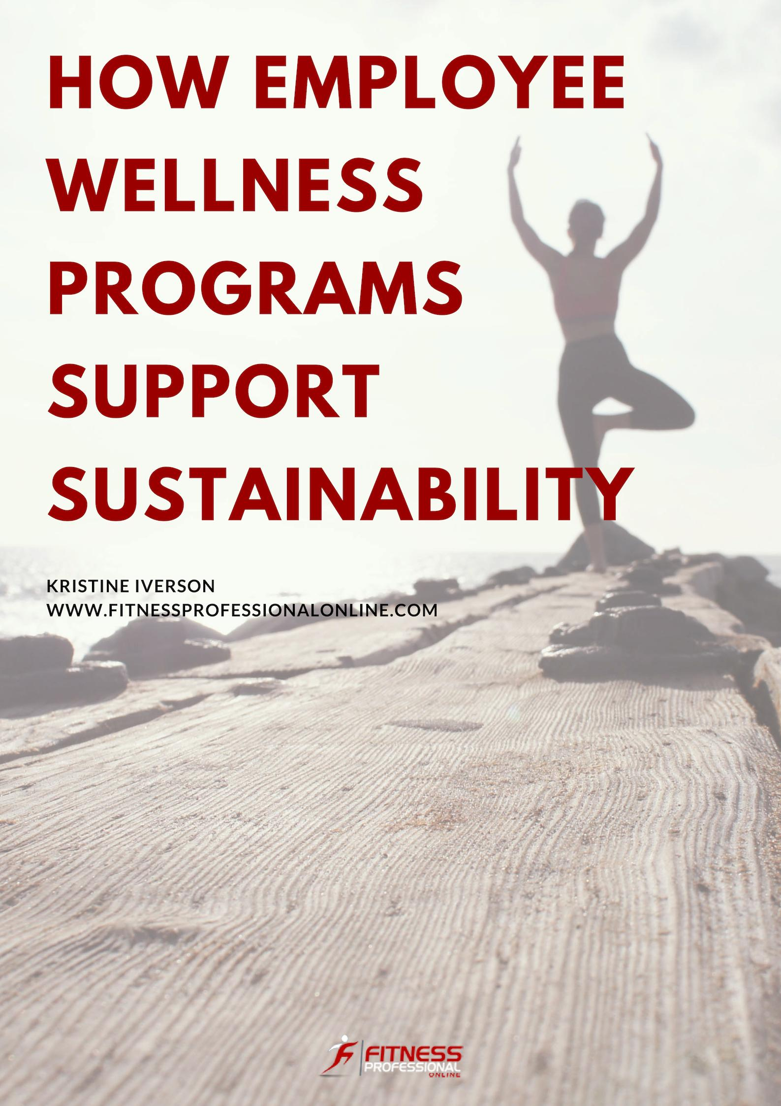 What do employee wellness programs have to do with sustainability?
